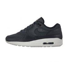 Nike Women's Air Max 1 Premium Anthracite/Black