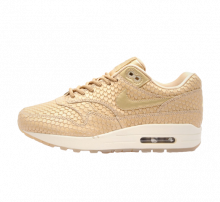Nike Women's Air Max 1 Premium Blur/LT Orewood Brown