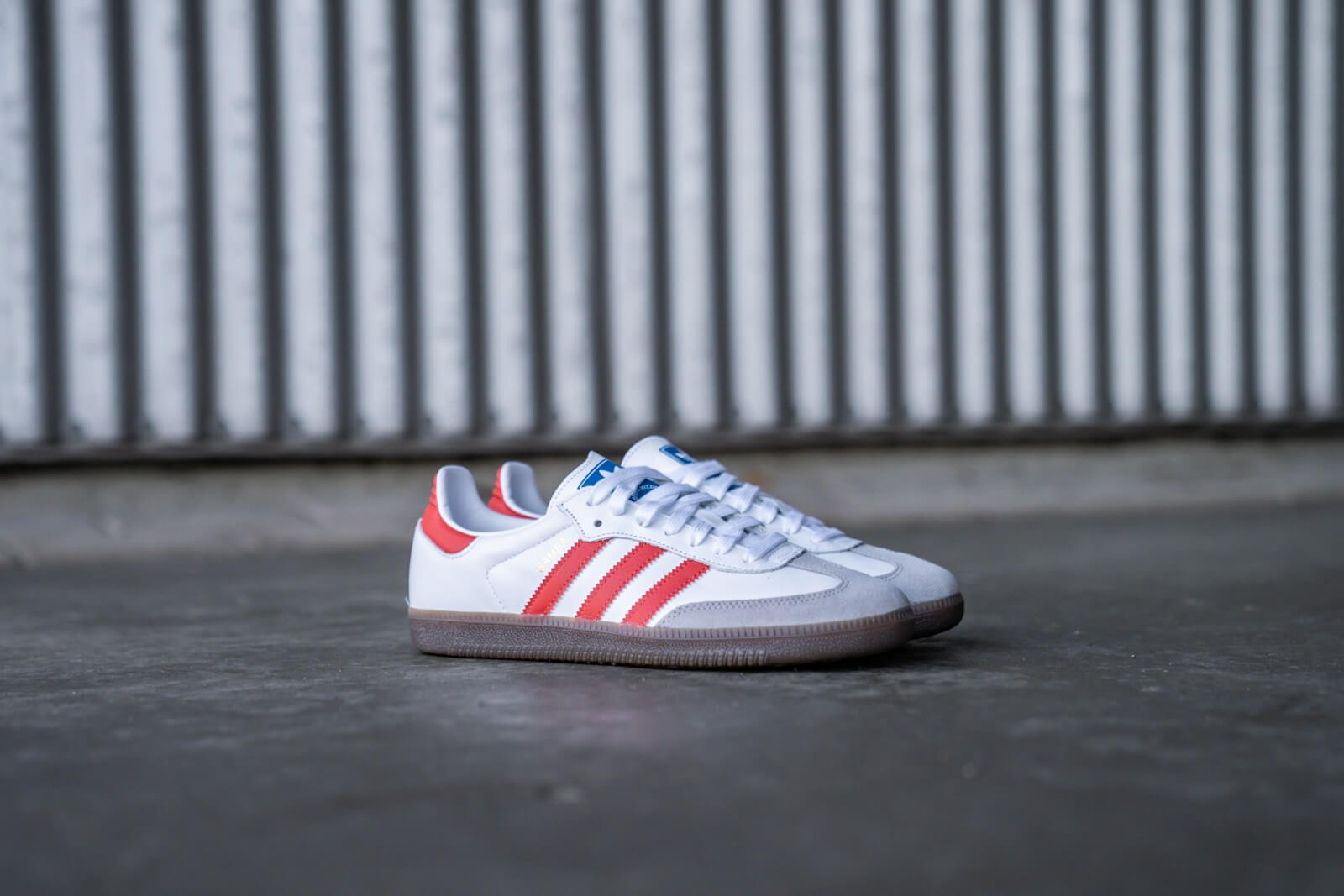 Adidas Samba OG Footwear WhiteTrace Scarlett Clear Granite EF6551